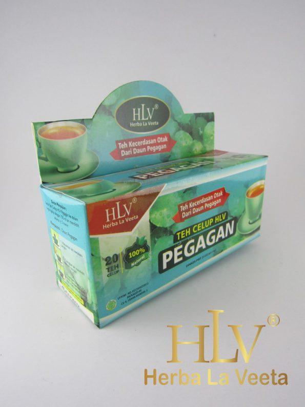 HLV Teh Celup Pegagan